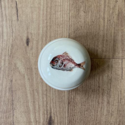 Caja pez nº2